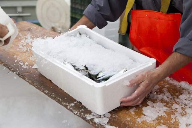 Термоящик для рыбы